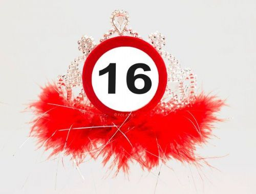 Traffic Sign 16th Party Tiara With Feathers Birthday Novelty Favor Gift Crown